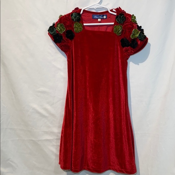 Mulberry Other - Mulberry blush perfect Holiday dress Girl size 6X
